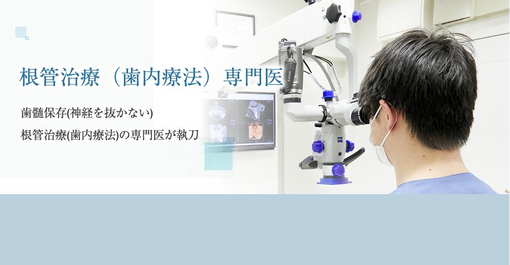 根管治療(歯内療法)専門医による歯内療法