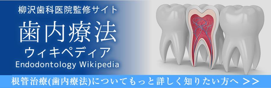 歯内療法ウィキペディア
