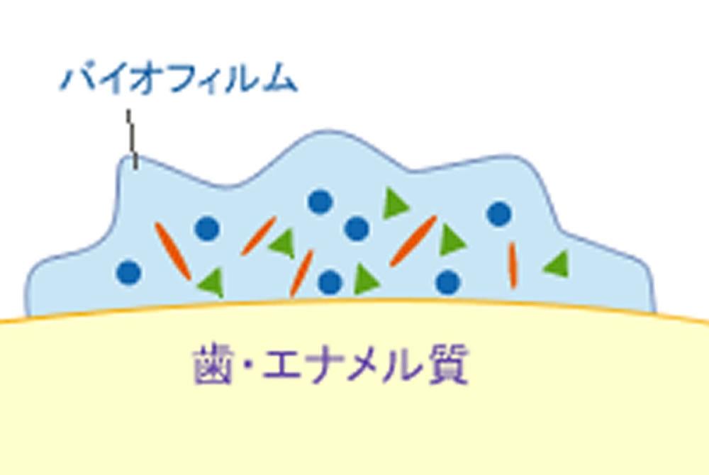 数億の細菌